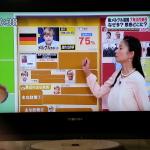 Mittagsfernsehen: Frau Merkel wird vor schwarz-rot-goldenem Hintergrund erklärt. (c) S. Blaschke