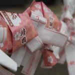 """Omikuji""-Horoskope im Kirschblüten-Design am Yasukuni-Schrein in Tokyo. (c) Sonja Blaschke"