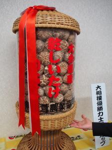 Getrocknete Pilze in einer Trophäe für Sumo-Ringer. (c) S. Blaschke