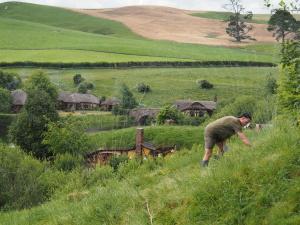 Jeden Tag sind ein Dutzend Gärtner in Hobbiton am Werk. (c) Sonja Blaschke